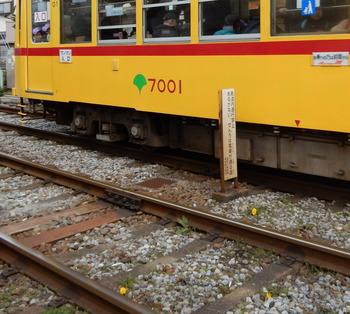 0314たんぽぽ電車DSCN9842.jpg
