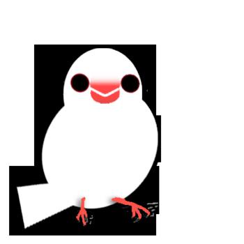 文鳥.png