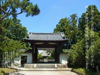 西大寺R0156163.jpg