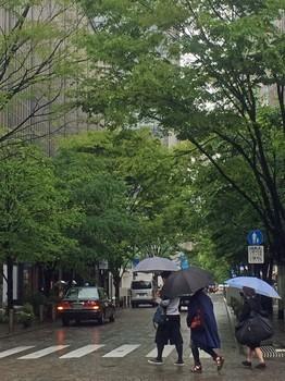 雨の街2433.jpg