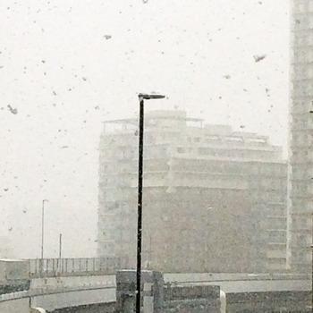 雪4865.jpg