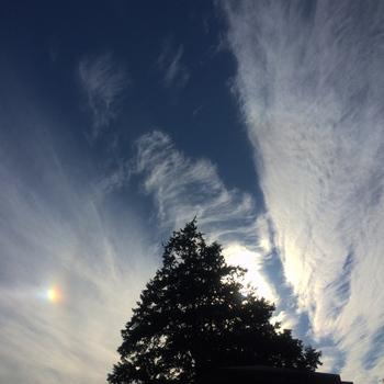 雲虹4561.jpg