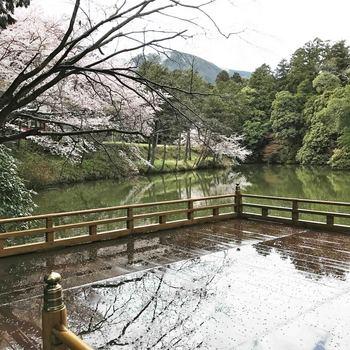 髙鴨神社舞台7008.jpg