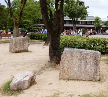 転がる石DSCN8972.jpg